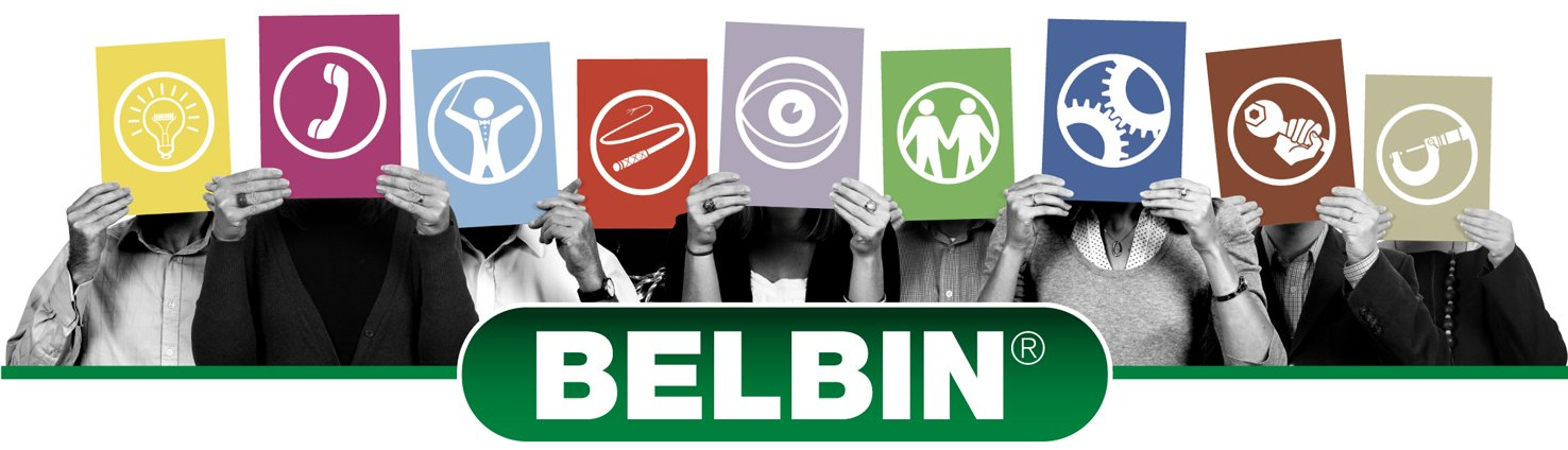BELBIN(uk)-2011-Role icons with people behind them
